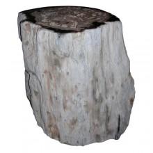 Stool in petrified wood (Araucaria)